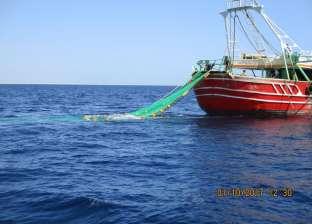 عودة حركة الصيد ببحيرة البرلس بعد تحسن أحوال الطقس