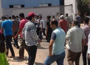 400 عامل بشركة الزامل في المنوفية يدخلون في إضراب لحين صرف المستحقات المالية
