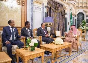 """""""اجتماع الرياض"""" يبحث تشكيل آلية تعاون للدول المتشاطئة للبحر الأحمر"""