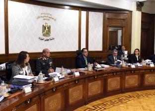 مجلس الوزراء ينشر حصاد قطاع الكهرباء خلال عام 2018