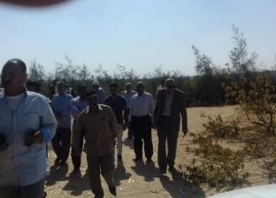 إزالة 38 حالة تعد على أراضي زراعية وأملاك دولة بديروط في أسيوط