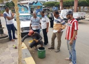 بالصور| حملات نظافة ورفع كفاءة مداخل الميدان الإبراهيمي بكفر الشيخ