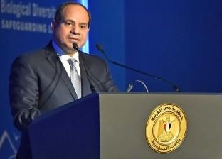 سفير مصر بالنمسا: السيسي أكد أن مصر هي بوابة الاستثمار في إفريقيا