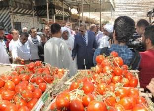 محافظ الجيزة: سوق الجملة للخضر والفاكهة لم يتأثر بزيادة أسعار الوقود