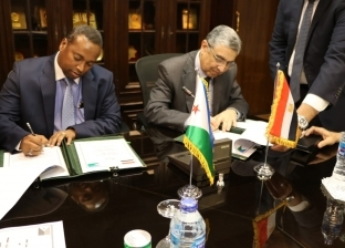 وضع خطط وتشريعات.. تعاون بين مصر وجيبوتي في مجال الكهرباء والطاقة