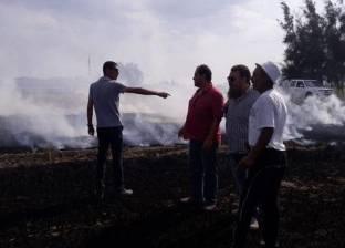 """""""بيئة وسط الدلتا"""": تحرير 46 محضرا ضد حرق قش الأرز"""