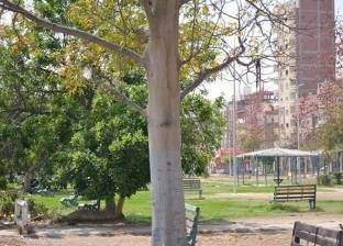 الصافي: الانتهاء من صيانة حديقة الخالدين في الإسماعيلية قبل عيد الربيع