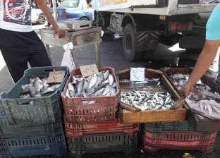 انخفاض أسعار الأسماك بالإسكندرية و«الشعبة»: «المزارع» ضبطت السوق