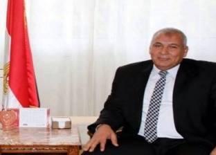 """محافظ الوادي الجديد يتفقد لجان الفرافرة قبل ساعات من بدء """"الاستفتاء"""""""