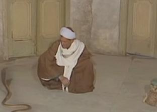 بالفيديو| «حكاوي القهاوي».. «آيات الله» وسيلة مروضي الثعابين في المنيا