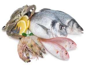 ضبط 2.2 طن أسماك بلطى غير صالحة بحملات مديرية الطب البيطري ببلطيم