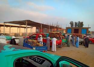 انتظام حركة البيع والشراء بسوق الجملة في بئر العبد