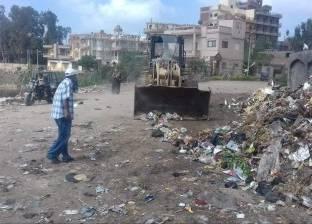 حملة للنظافة حول المدارس في عامرية الإسكندرية