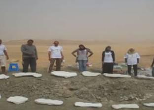 مدير مركز حفريات جامعة المنصورة: الإعلان عن اكتشافات جديدة قريبا