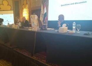"""نائب رئيس """"الدستورية"""" الأسبق: الانتخاب حق عام ومتعلق بسيادة الشعب"""