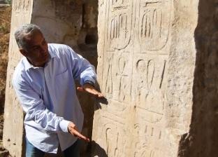 """وزير الآثار الأسبق: عثرنا على قطع أثرية مهمة خلال حفر """"عرب الحصن"""""""