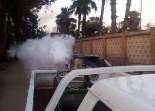 حملات مكثفة لمقاومة الناموس والحشرات الطائرة في الدقهلية