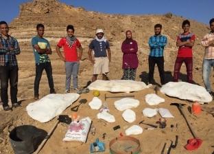 """مدير """"حفريات علوم المنصورة"""": اكتشاف عظام عمرها 100 مليون عام بالواحات"""