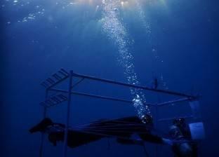 صدام الكيلاني يتخطى 78 ساعة غطس.. ومدربه: ينام ويصلي تحت الماء