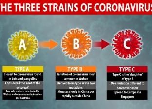 دراسة: العالم يواجه 3 سلالات من فيروس كورونا المستجد