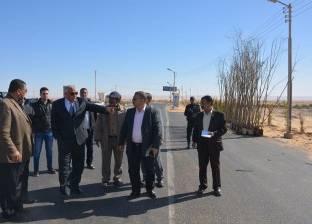 محافظ الوادى الجديد يتفقد أعمال زراعة الأشجار بمدخل مدينة الخارجة