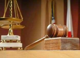 """حبس موظف سابق بحي العجوزة عام لاتهامه بـ""""التظاهر بدون تصريح"""" في الوراق"""