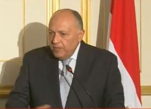 شكري: حكومة سوريا تحتاج لاتخاذ إجراءات تؤهلها للعودة للجامعة العربية