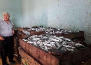 ارتفاع أسعار الأسماك في دمياط 20%.. والبداوي: بسبب قلة المعروض