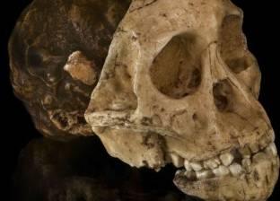 بالفيديو| العثور على 56 جثة لأطفال مدفونة في مقبرة جماعية