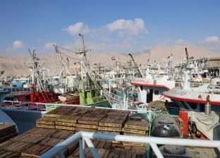 بالصور| بعد توقف 8 أشهر.. عودة الصيد بخليج السويس والبحر الأحمر