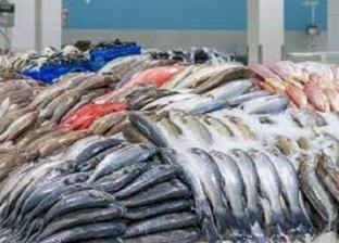 شعبة المستوردين تستبعد الأسماك من قائمة المتأثرين بفيرس كورونا