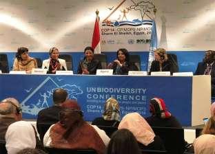 وزيرة البيئة: الدول الإفريقية قادرة على الاتفاق لحل المشاكل البيئية