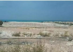 """تحقيقات الاستيلاء على """"الساحل الشمالى"""": المتهمون زوّروا محاضر ملاك قرية النخيل وطلبوا تخصيص الأرض وحصلوا عليها بسعر 42 دولاراً للمتر"""