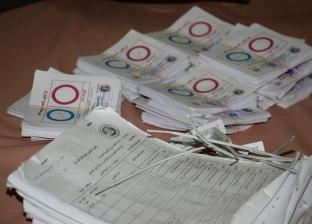 """""""الأسرع في تاريخ التصويت"""".. إعلان نتيجة التعديلات الدستورية اليوم"""