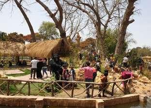 الصادق: تجهيز وصيانة المسطحات الخضراء في حدائق القناطر الخيرية