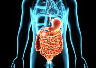 3 أمور تساعد على تحسين الهضم بعد الوجبات الدسمة