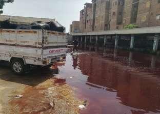 محافظ الغربية: طوارئ بمجازر المحافظة طوال أيام عيد الأضحى المبارك