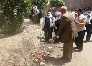 """استمرار تنظيم حملة """"تنظيف وتجميل من بيتك للشارع"""" في أسوان"""