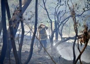 بعد محاصرتها آلاف الأشخاص.. القصة الكاملة لحريق غابات استراليا