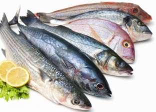 الأسماك تتراجع 5 جنيهات.. وتجار: أسعارها ستنخفض حتى الشتاء