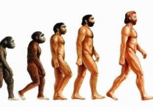 بعد أن فقد ذيله.. ما التغيرات التي ستحصل في جسم الإنسان مستقبلا؟