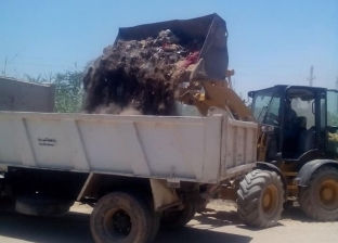 رفع 420 طن قمامة ورفع الإشغالات في حملات بالمنصورة
