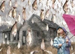 """""""سمك ولحم وجيلي"""".. تعرف على أغرب أشياء أمطرتها السماء"""