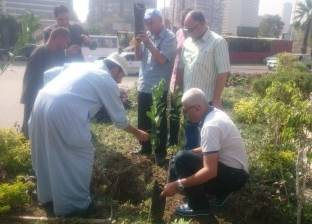 إطلاق حملة لزراعة 1000 شجرة مثمرة بحي شمال الجيزة