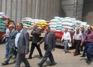 """""""صوامع قنا"""" تستقبل 43 ألف طن قمح من المزارعين"""