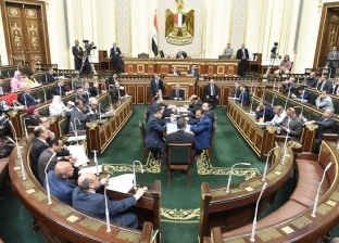 قوانين «الاستثمار والمخدرات والملاحة والثروة المعدنية» على أجندة البرلمان بعد العيد