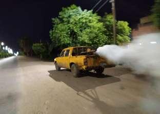 حملات مكثفة لمكافحة الناموس والحشرات الطائرة بالدقهلية