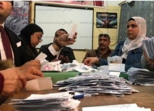 """بين """"الرئاسة"""" و""""تعديل الدستور"""".. لماذا تراجعت نسبة الأصوات الباطلة؟"""