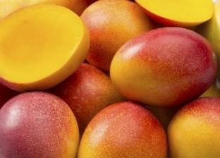 طريقة اختيار المانجو للتخزين أو الأكل في غير موسمها