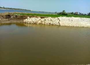 أيمن عمار: مياه الصرف الزراعي والصناعي أساس مشكلة بحيرة المنزلة
